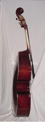 Upright Bass solid spruce top.