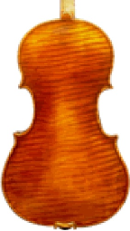 Collectors Series Viola